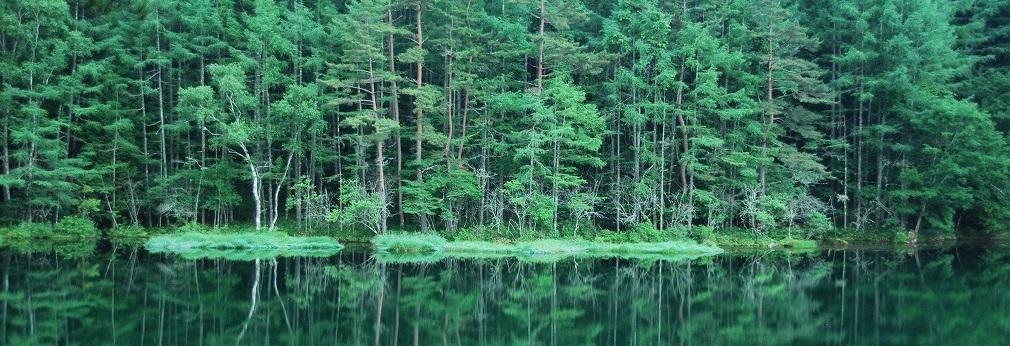 初夏の御射鹿池へ行ってきた – 長野県茅野市 –